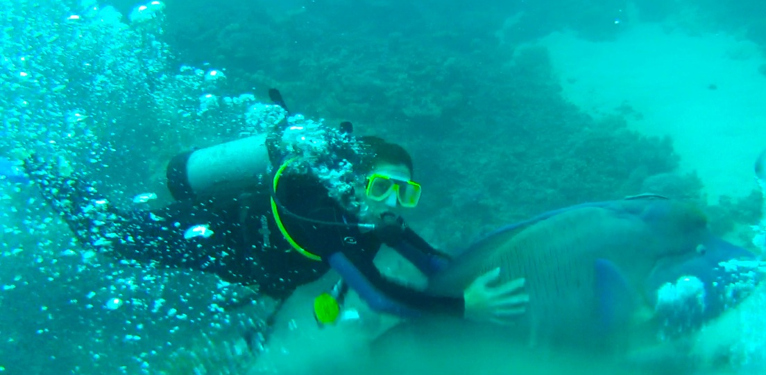 Swimming with Nemo