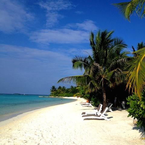 Sheraton Island Life