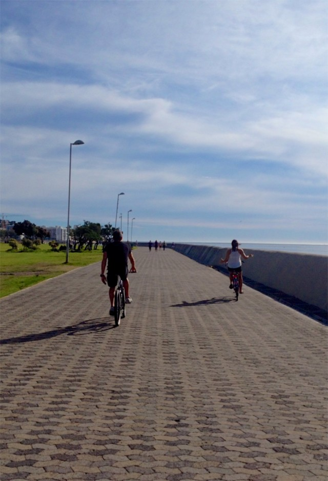 Cape Town Biking