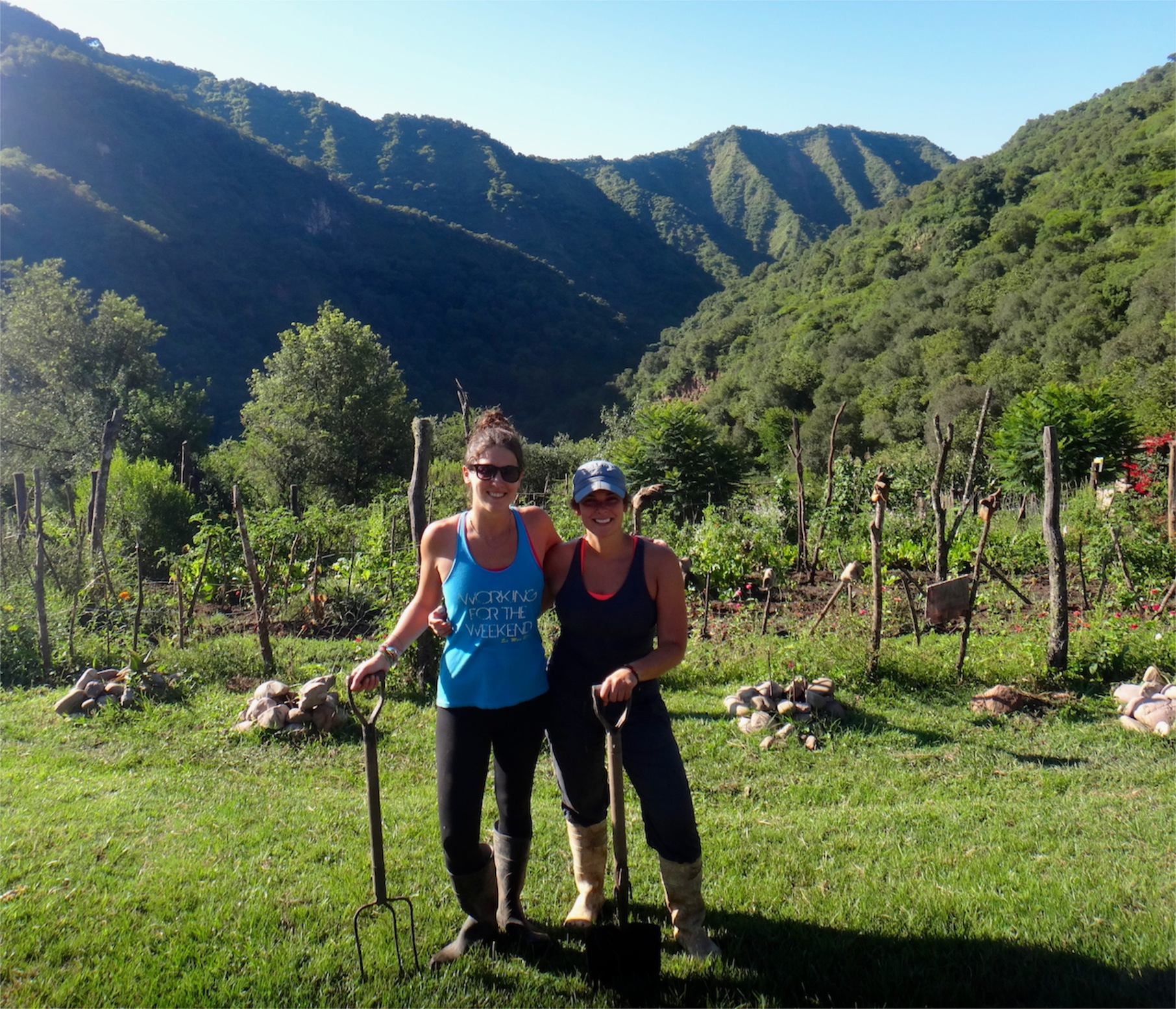 Working on an Organic Farm (our WWOOF experience)