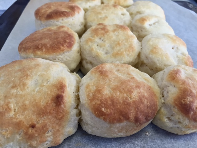 Buttermilk biscuits hot from the oven