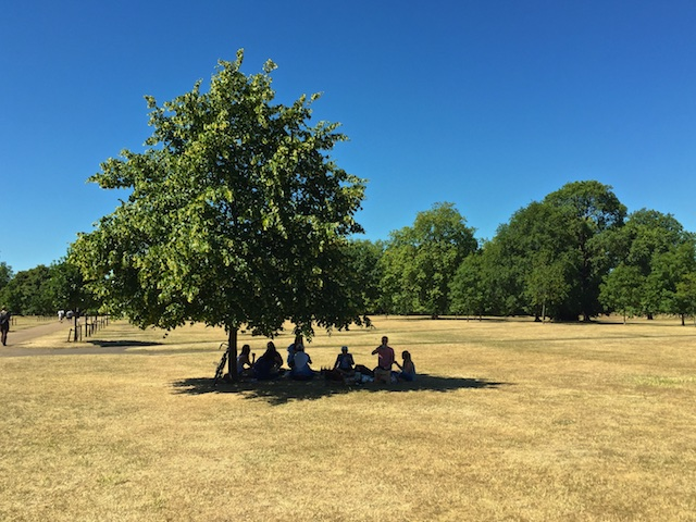 Picnicking in Hyde Park