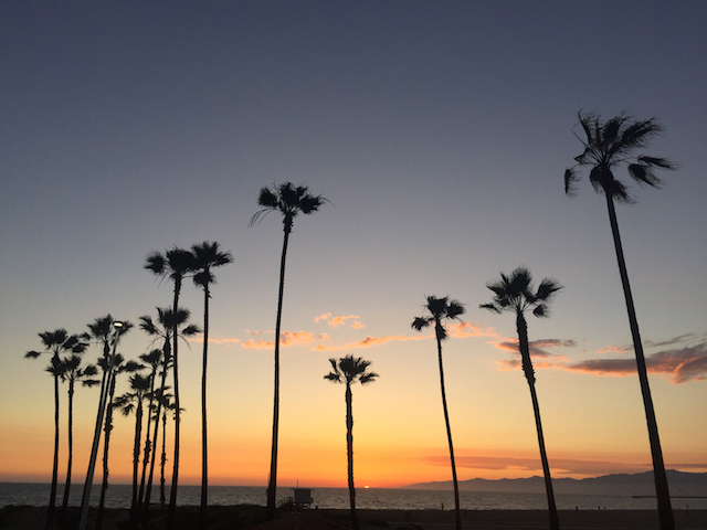 Los Angeles Beach Sunset